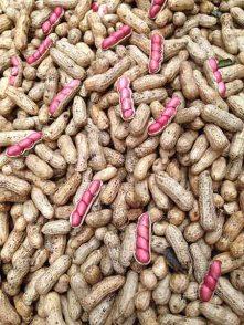 peanutPattern